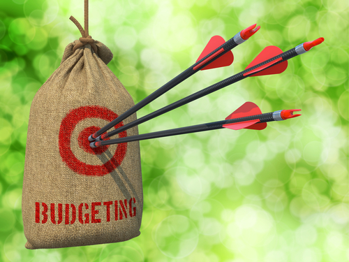 Too Little? Too Much? – How to Optimize Your Technology Budget